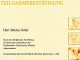 Ausbildung in Klassischer Akupunktur und TCM, 2011